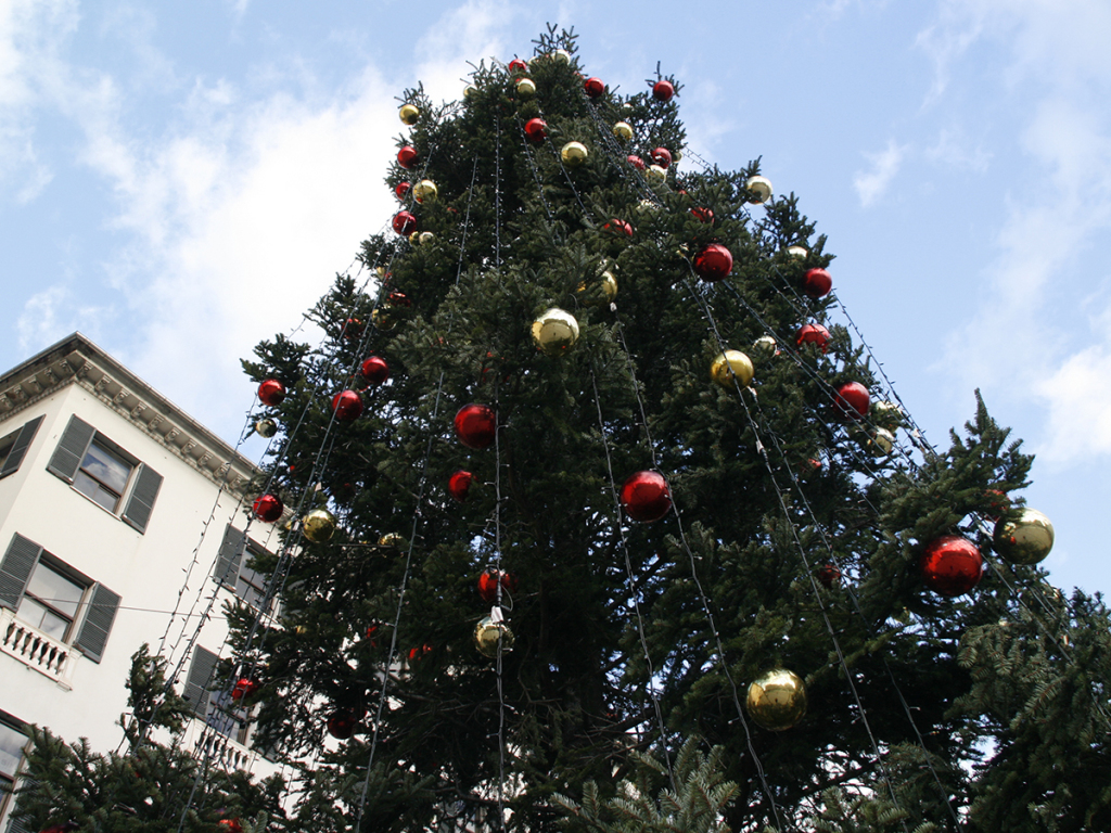 albero natale - ASTer