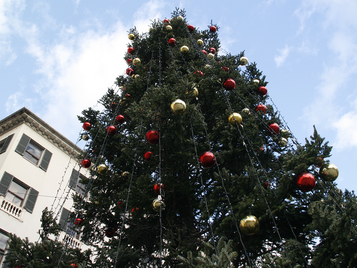 Accensione dell'albero di Natale in Piazza De Ferrari