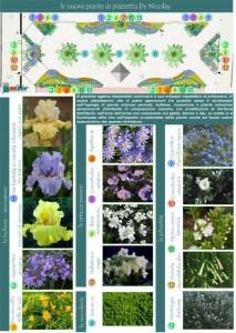 tipologia piante previste nell'aiuola
