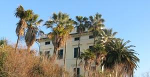 palme pallavicini
