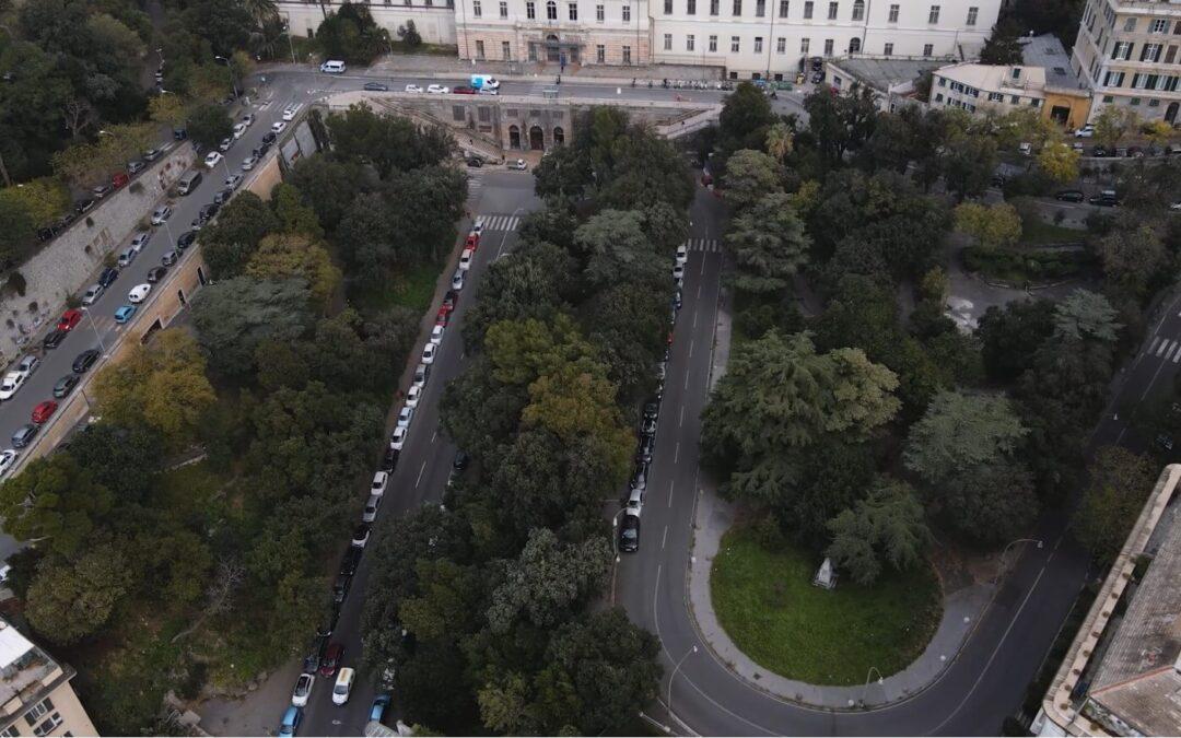 I segreti dell'impianto degli alberi sulle strade